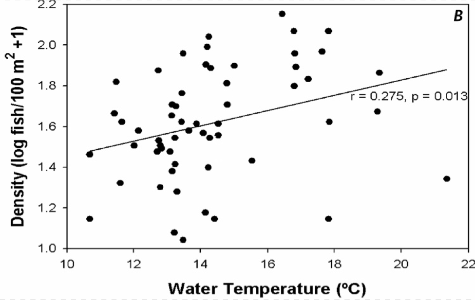 Fig. 13b. fish density as a function of water temperature