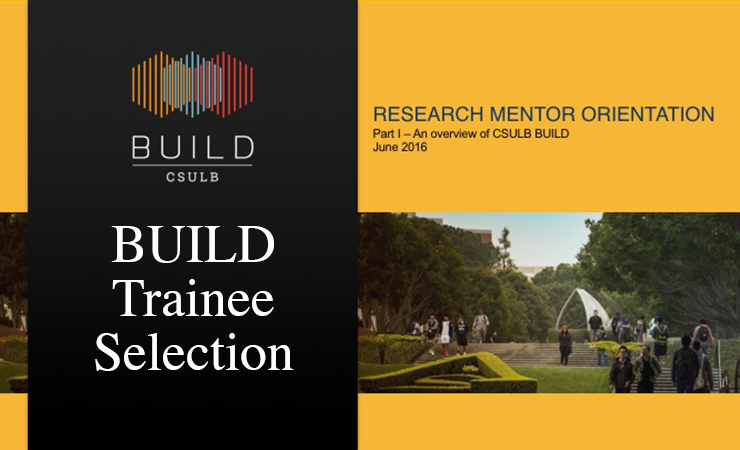 BUILD Trainee Selection