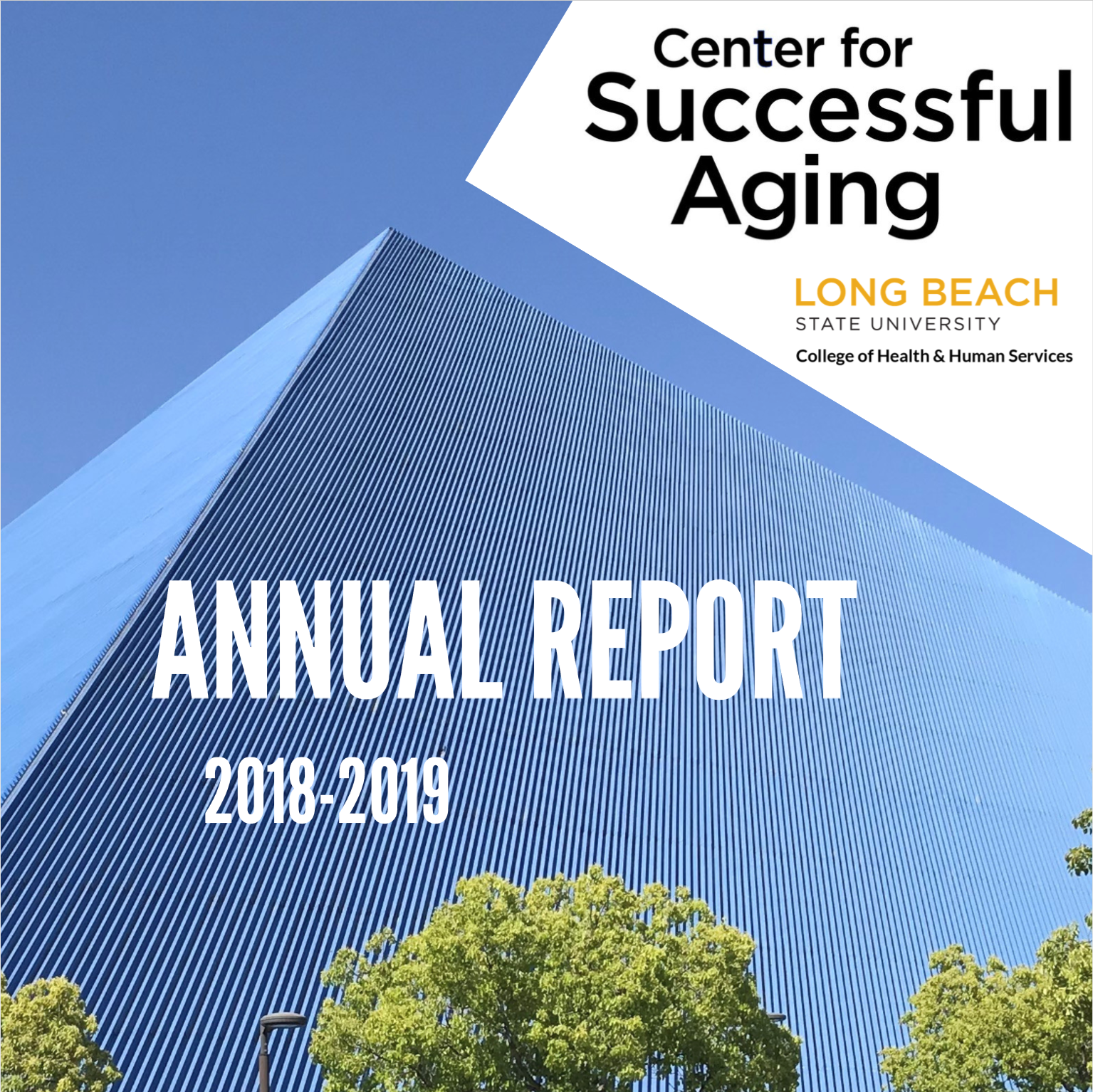 Center for Successful Aging Annual Report Cover Page
