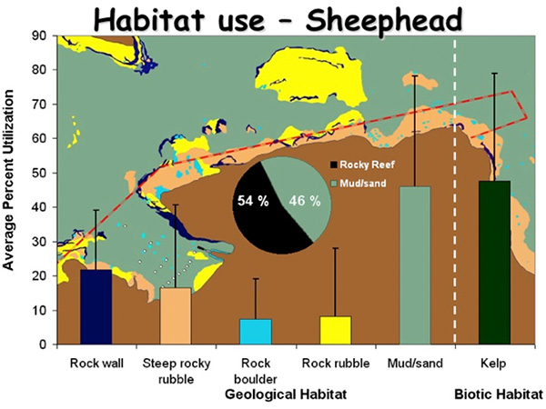 Fig. 14. habitat use of California sheephead