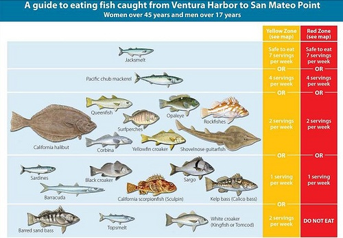 Fig. 3. guide to eating fish caught from Ventura Harbor to San Mateo Point
