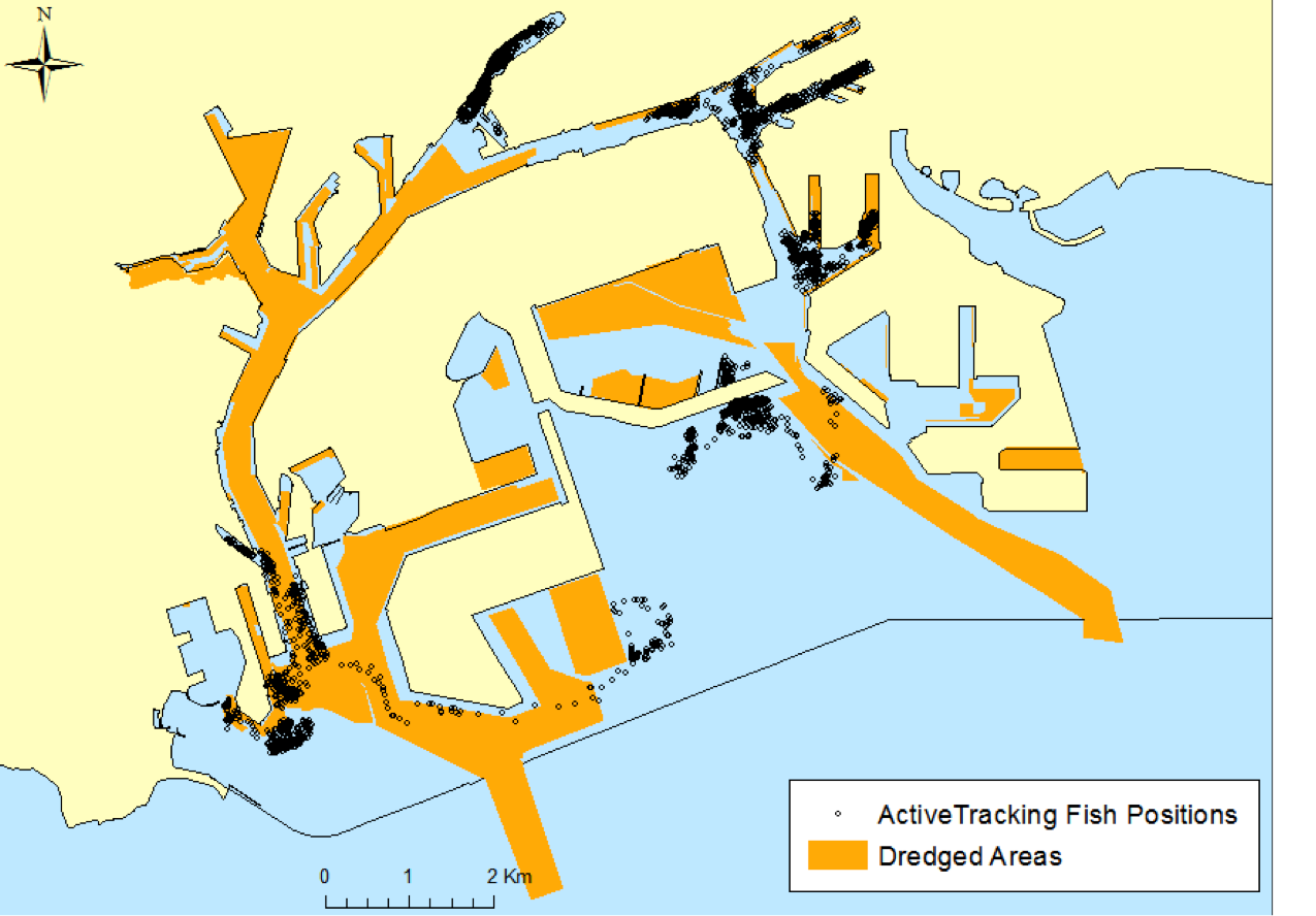 Fig. 17. active tracking locations and dredged areas